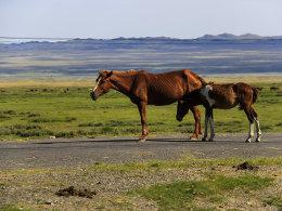十一北疆自驾游全攻略 这个国庆不堵车